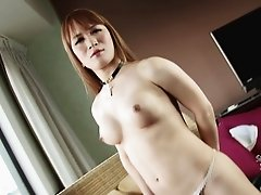 Curvaceous Asian shemale exposes each part of her attractive body