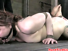 Hogtied Mollie Rose sole and butt whipped