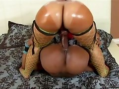 Kinky ebony lesbians shagging with a strap on