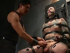 Gay BDSM along horny Ruckus